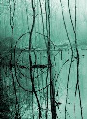 Dsc_3184-Konrast-Ausschnitt-grün